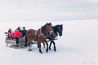 Na narty w Sudety - kulig za parą koni